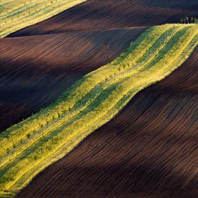 ...jarní krajina na jižní Moravě...