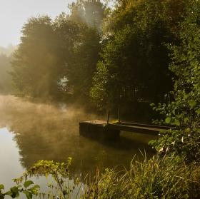 Svítání u rybníka