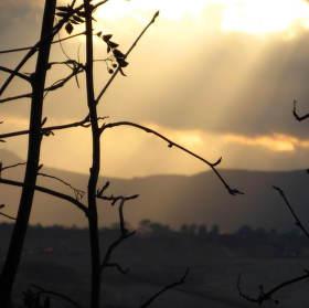 ..na obzoru krajina jindy nevídaná..