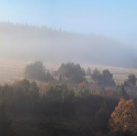 Šumavá v mlha