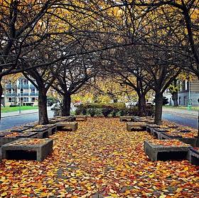 Barevný nádech podzimu