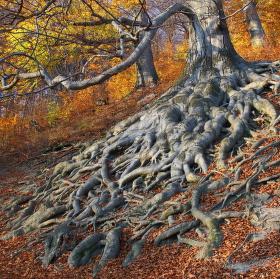 Podzimní Hukvaldy