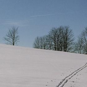 Stopy  ve sněhu