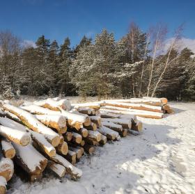 Zima v Toulovcových maštalích