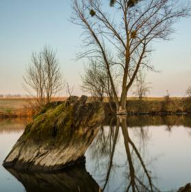 Slepé rameno řeky Svratky