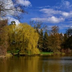 Začátek jara v zámeckém parku (Lednice)