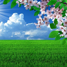 Jarní krajina...