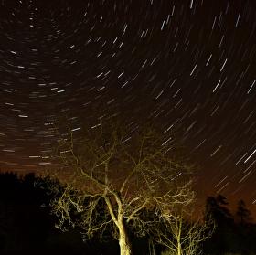 Nad stromem