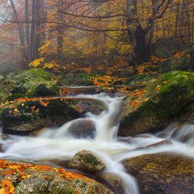 Podzim na řece II.