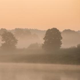 Ráno u řeky III