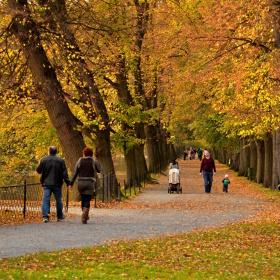 podzimní procházky