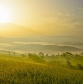 ranní Belvedere
