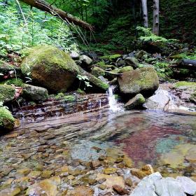 Kouzlo přírodního potoka Satiny