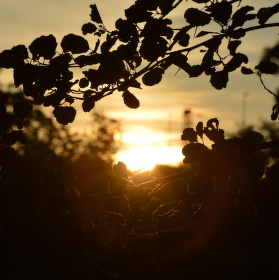 Zářijový západ slunce