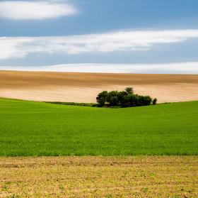 Jarná krajina v poli za Štefanovom