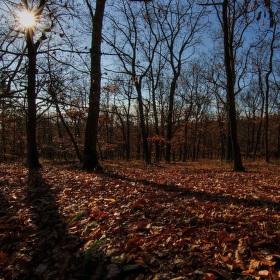 podzimní svítání
