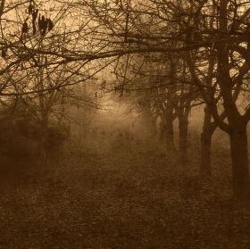 Cesta melancholií..