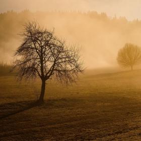 ranné hmly...