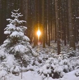 lednové osvícení
