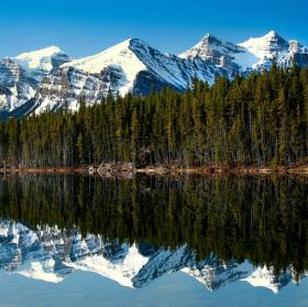 Kanadská reflexe