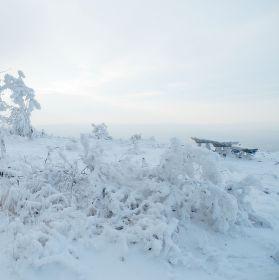 Trocha sněhu