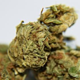 Weed (makro)
