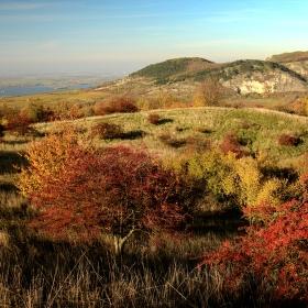 Pálava ze Stolové hory