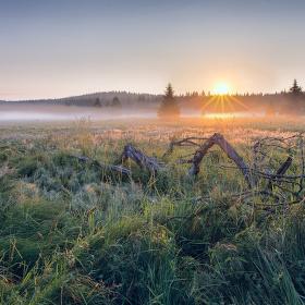 Šumava-Prášily