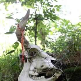 Obětiště v archeoskanzenu Uhřínov