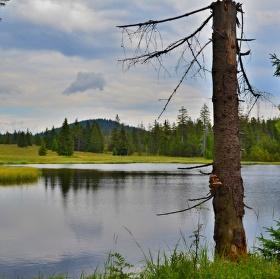 Mrtvý rybník 2