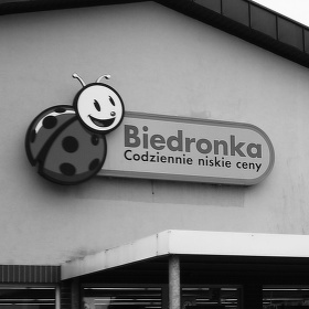 Biedronka Polsko