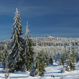 Zimní idylka v Jizerkách.