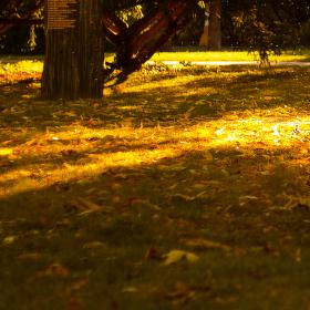 teplo podzimu
