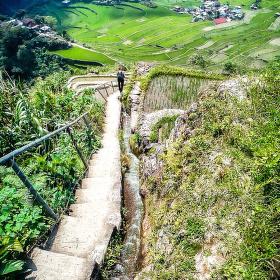 Rýžové terasy v Batadu