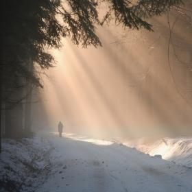 Cesta ke světlu