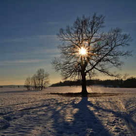 Strážce slunce....