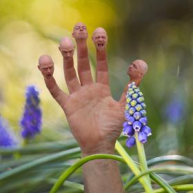 Jarní metamorfoza