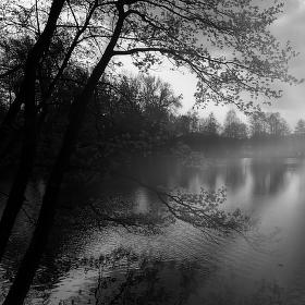Rybník Labuť