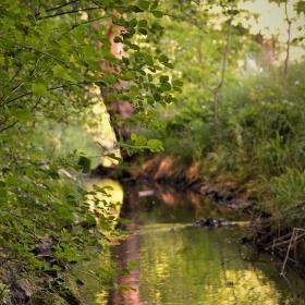 Potok ve městě
