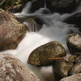 Vodná krása