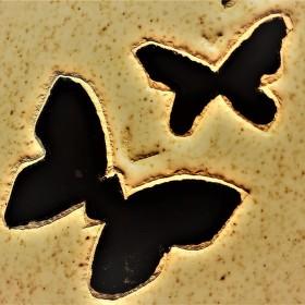Motýlí námluvy v kambriu
