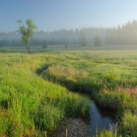 Pohořský potok