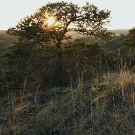 Západ slunce, Hadcova step u Mohelna