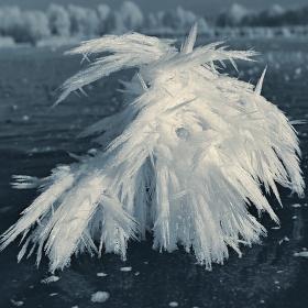 Námraza na zamrzlé hladině rybníku