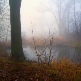 U rybníčku