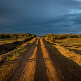 Cesta v Keni