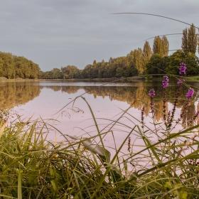 Krásy Českých řek  -  Labe Kostomlátky