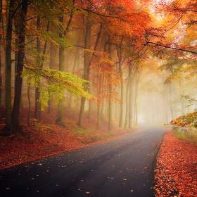 ...barvy podzimu