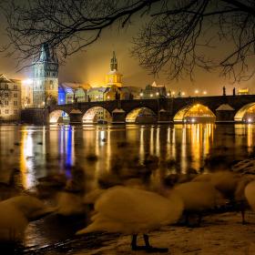 winter tale...