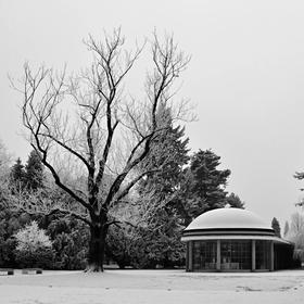 Kolonáda profesora Libenského v zimě